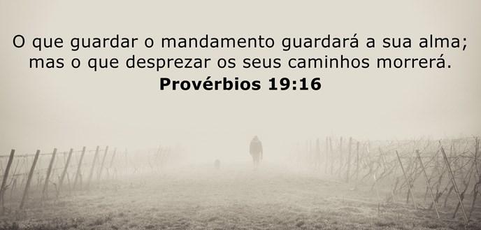 O que guardar o mandamento guardará a sua alma; mas o que desprezar os seus caminhos morrerá.