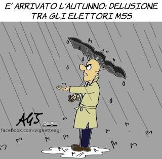 m5s, pioggia, maltempo, piove governo ladro, delusione, vignetta, satira