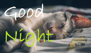 good night cute images download