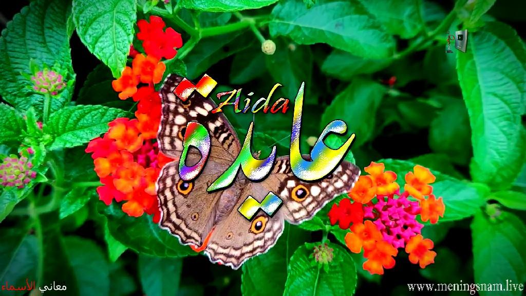 معنى اسم عايدة وصفات حاملة هذا الاسم Aida