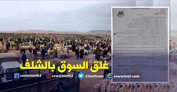قرار بغلق سوق المواشي بالشلف