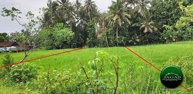 Tanah Sawah Produktif dekat RS UII Bantul