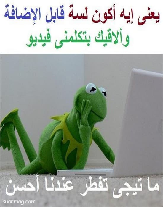 حالات واتس مضحكه مصريه 8   Egyptian funny WhatsApp status 8