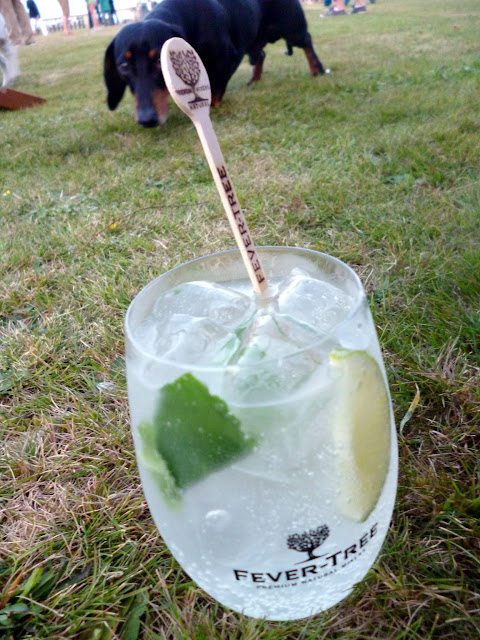 drinks in a field british summer festival posh gin