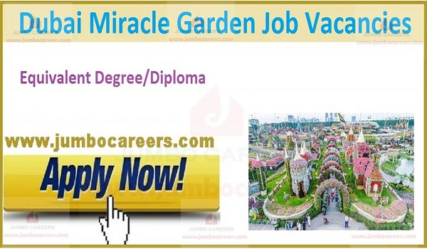 Available Dubai job vacancies,