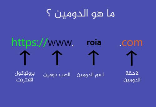 ما هو الدومين domain name ؟
