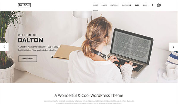 dalton-simple-multipurpose-theme