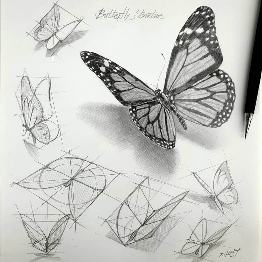 02-Flying-butterfly-anjjaemi-www-designstack-co