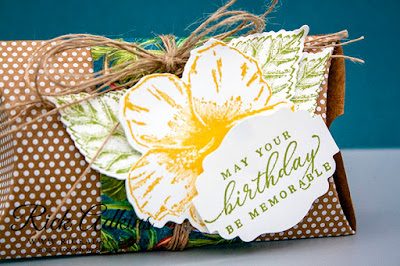 kraft pillow boxes, timeless tropical bundle, rick adkins, stampin up