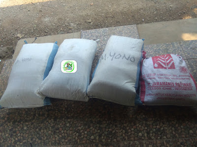 Benih Padi yang dibeli   Pak SUHARYADI Karawang, Jabar.  (Setelah Packing)