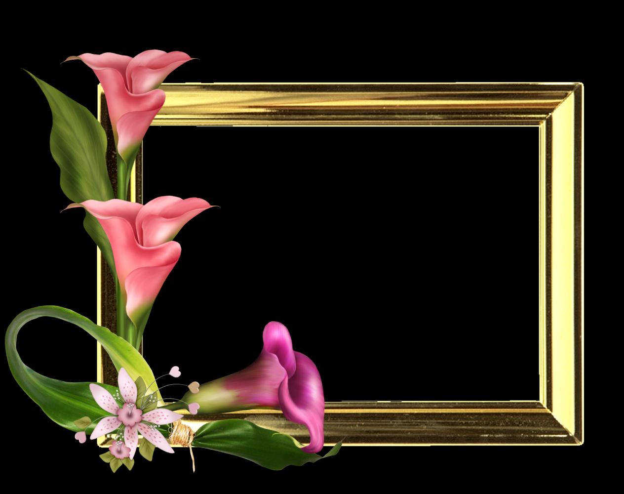 Fondo Digital De Fotos Elegante Diseño En Png Marcos Gratis Para Fotos