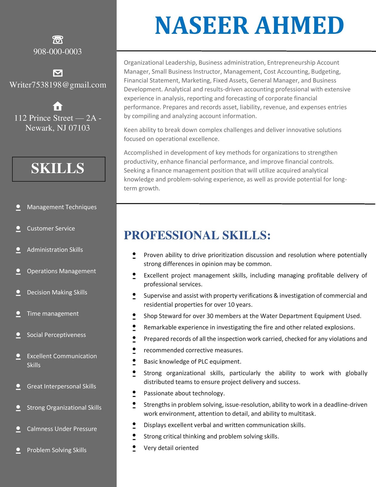 Accountant Resume Cv Ms Word Template Sample With Summary Skills