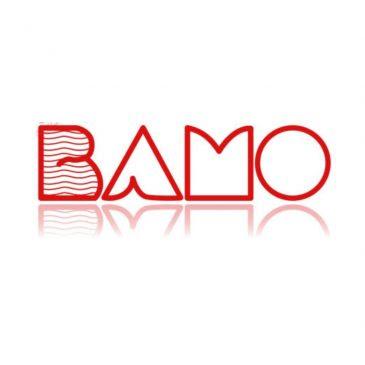 Bamo Level Measurement