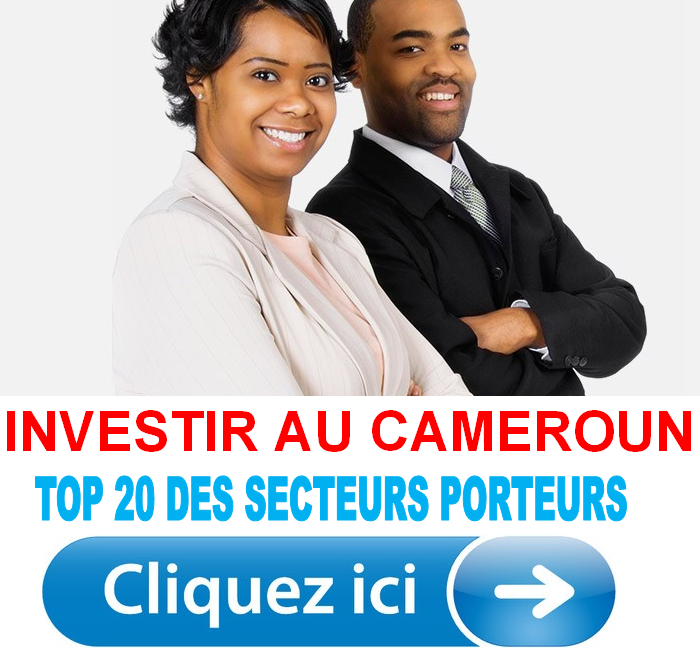 TOP 20 des secteurs porteurs au Cameroun