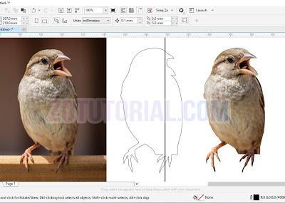 Tutorial Menyeleksi dan Crop Gambar dengan Pen Tool di CorelDraw - Cropping Foto