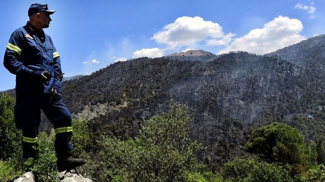 Η Ανταρσία στο Μωριά για τις φωτιές στην Πελοπόννησο