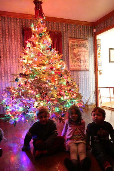 My grandkids love the family tree!