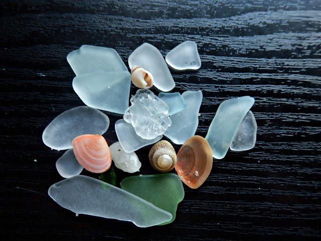 Seaglass and shells found at Carlyon Bay, Cornwall