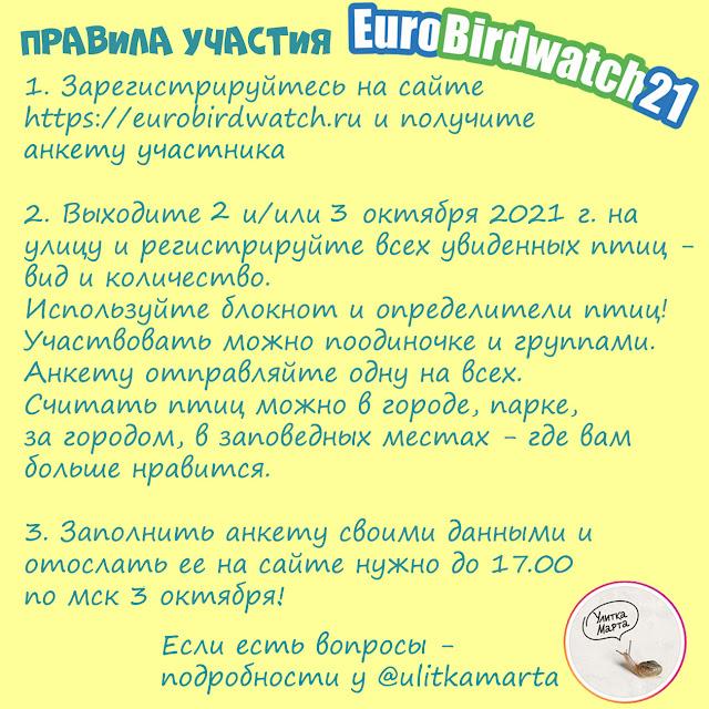 Правила участия в Eurobirdwatch 2021