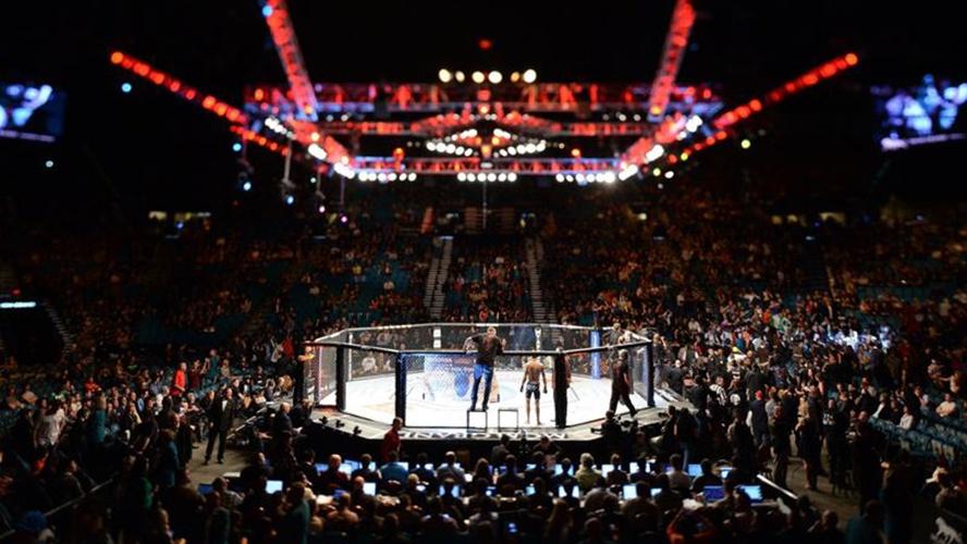 Octógono UFC - Reprodução Internet