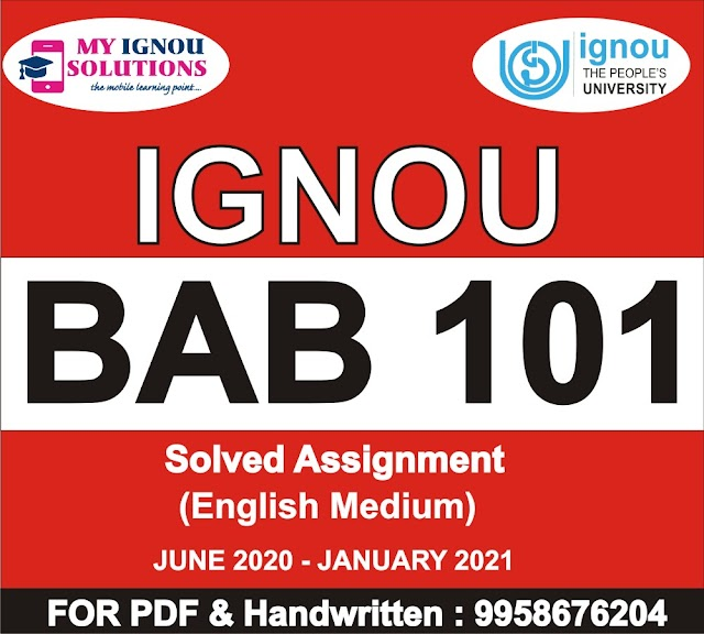 BAB 101 Solved Assignment 2020-21