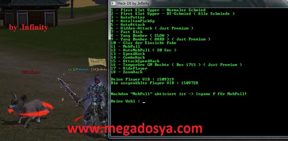Metin2 Multihack 4 0 indir – Download - oyun-cuyuz - Blogcu com
