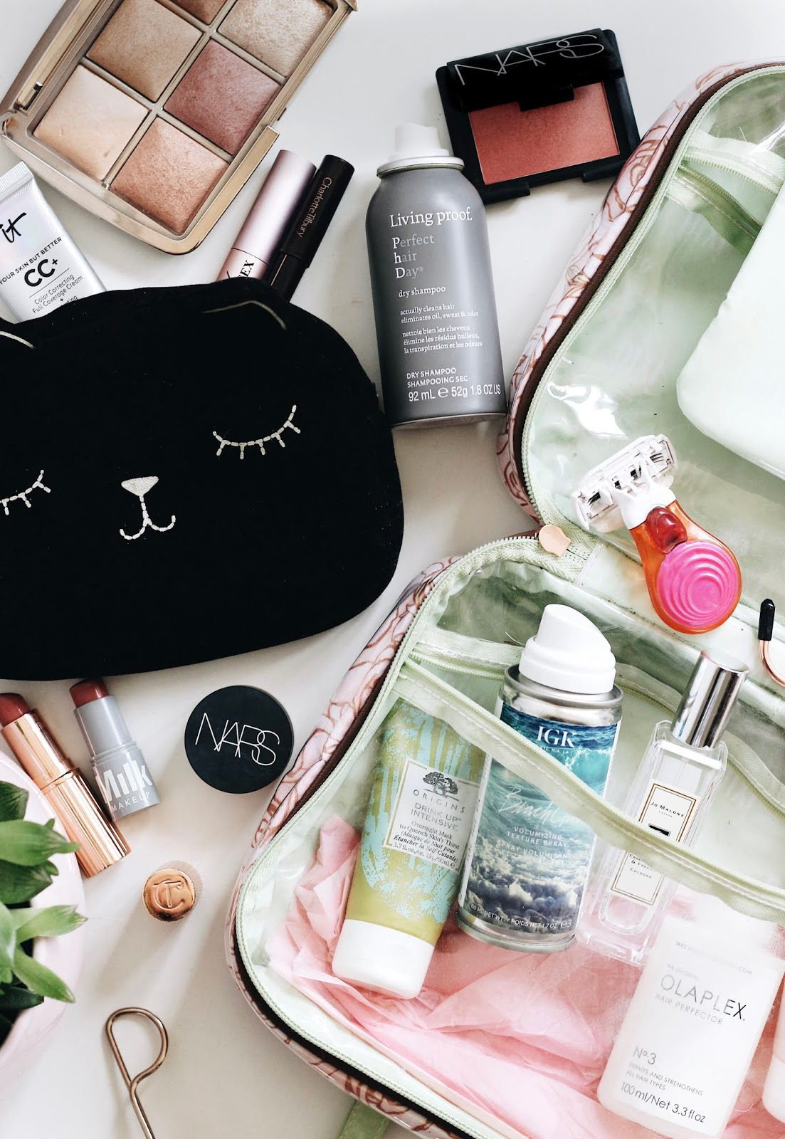 Travel Beauty Bag
