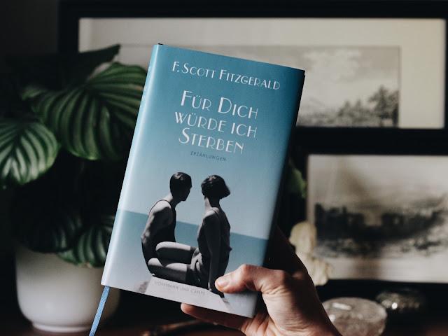 F. Scott Fitzgerald Für Dich Würde Ich Sterben Erzählungen