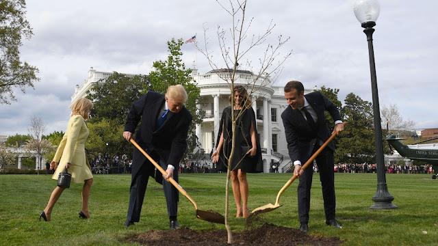 'Pohon Persahabatan' Macron Dan Trump Telah Mati, Ini Penyebabnya !