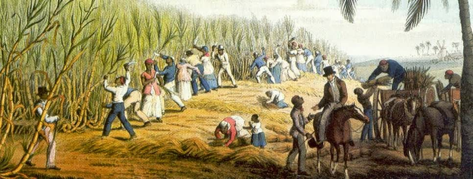 'Brasil Colônia': Indústria Açucareira e Escravidão
