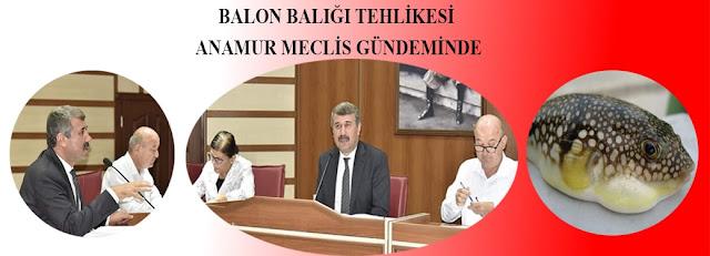 MANŞET, Anamur Haber, Anamur Son Dakika, Hidayet Kılınç, Anamur Belediyesi,