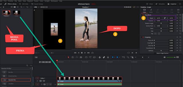 applicare zoom a video con davinci