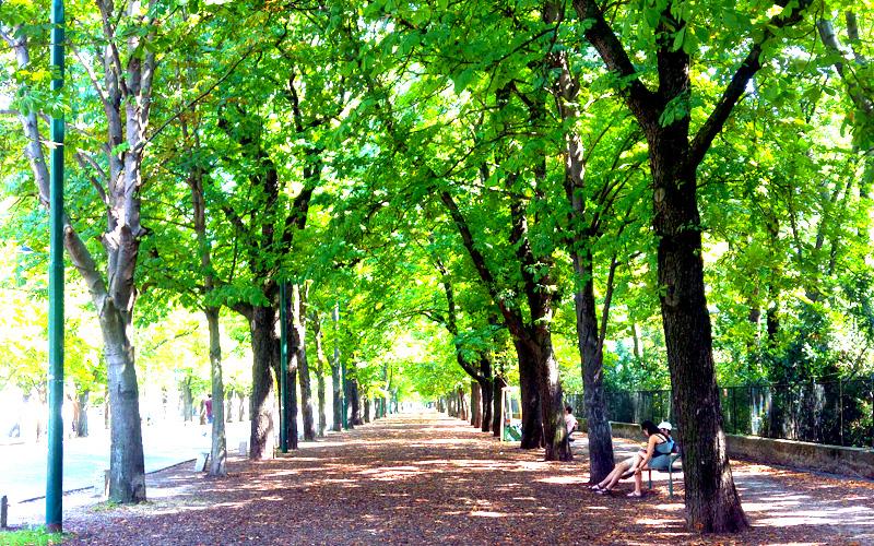 Parc Prater, Vienne