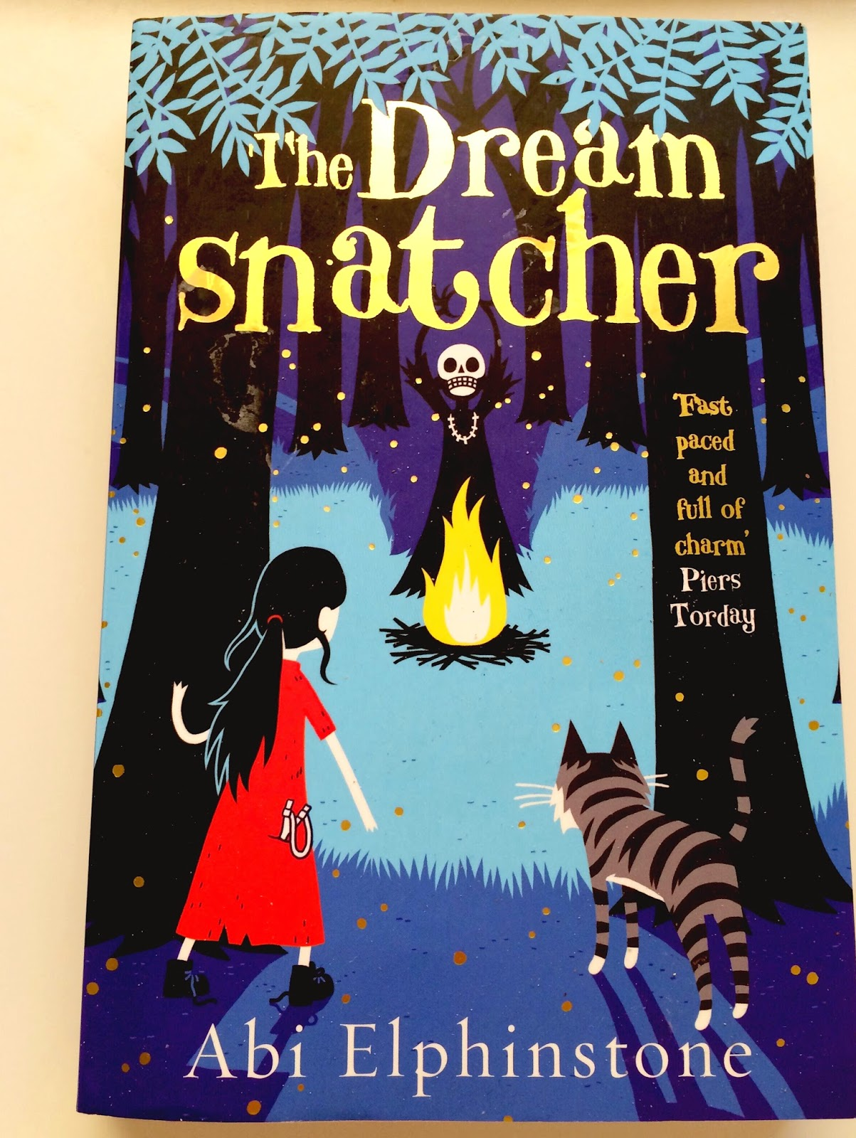 The dreamsnatcher paperback book
