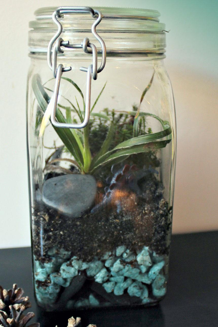 sugar and dinosaurs diy 10 les sous bois dans un bocal ou le terrarium de mousse. Black Bedroom Furniture Sets. Home Design Ideas