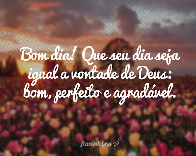 bom dia - Bom dia! Que seu dia seja igual a vontade de Deus: Bom perfeito e agradável.