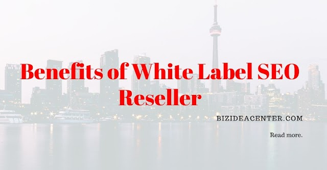 Top 5 Benefits of White Label SEO Reseller