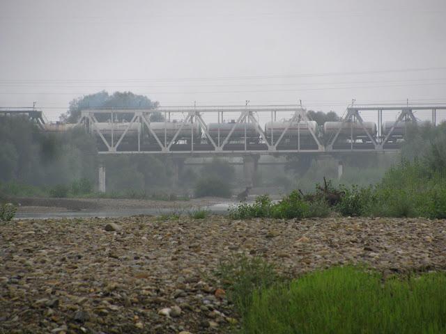 ж/д мост Стрый