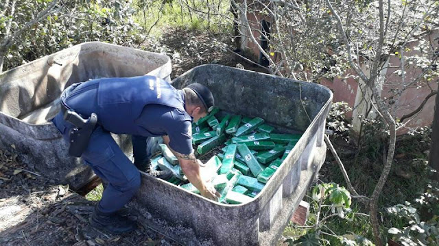 Rondas Ostensivas Municipais (ROMU) de Limeira encontra 90 quilos de maconha em caixa d'água de sítio abandonado