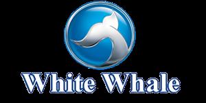 صيانه وايت ويل بالاسكندريه | توكيل صيانة ثلاجات وايت ويل بالاسكندريه 01062625363 - 01128991004