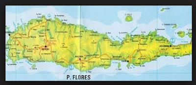 Sejarah dan Kebudayaan Suku Flores – Nusa Tenggara Timur (NTT)