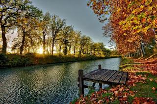 صور للطبيعة