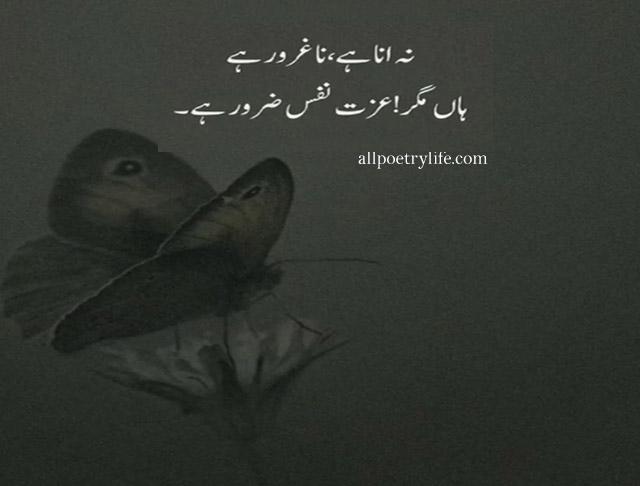 sad poetry, sad shayari, sad quotes urdu, sad poetry in urdu, heart touching shayari, sad shayari image, sad shayari urdu, zindagi sad shayari, poetry in urdu 2 lines, sad shayari status, sad shayari photo, izat poetry,