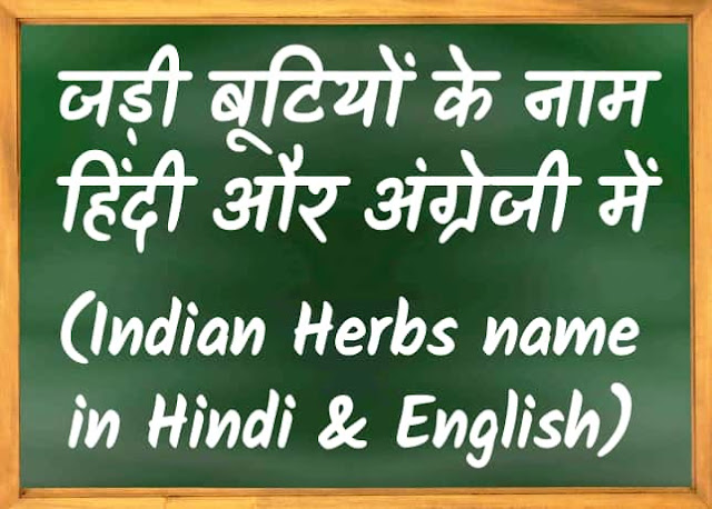 देशी जड़ी बूटी के नाम हिंदी और अंग्रेजी में | Indian Herbs name in Hindi and English