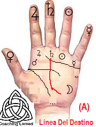 Linea del Destino, Numerologia cabalistica, Quiromancia