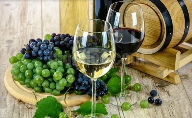 Minuman anggur merah dimata penikmatnya