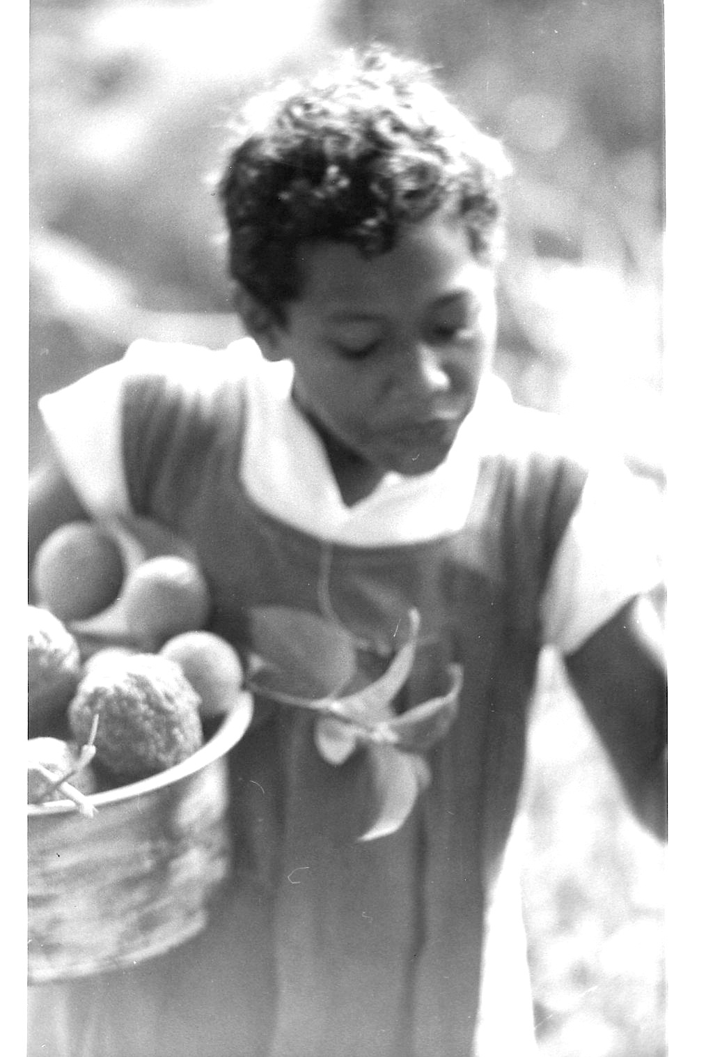 Daily Life In Ono I Lau Fiji 50 Years Ago Girl With Pan Full Of Fruit