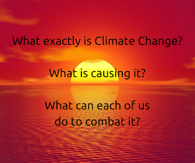 What can we all do to combat Climate Change?