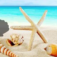 Games2Rule-G2R Fantasy Conch Beach Escape