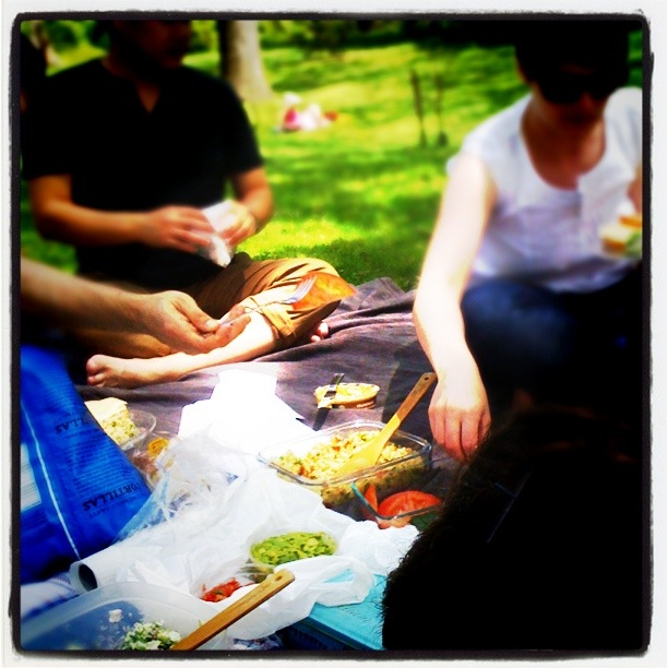 {ErinOutandAbout} Picnic in High Park